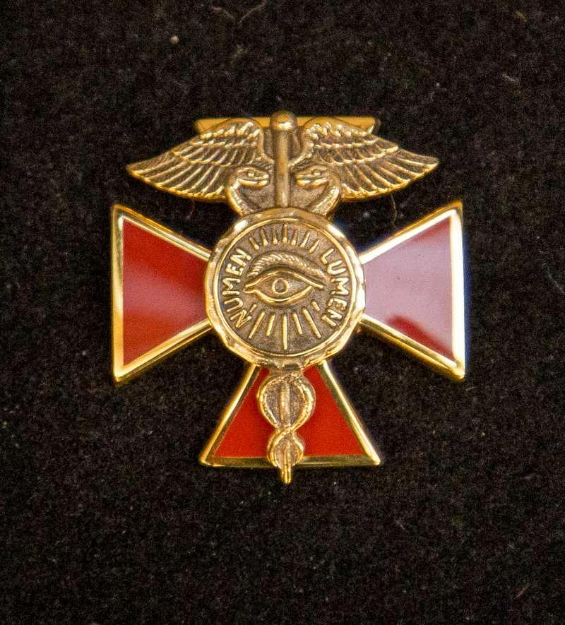 Nursing Alumni Organization Pin